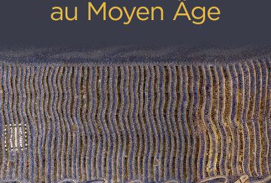 Image illustrant l'article les-catastrophes-naturelles-au-moyen-age de La Cliothèque