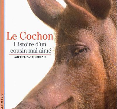 Le cochon. Histoire d'un cousin mal aimé