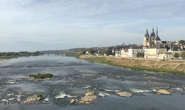Veille éditoriale retour de Blois