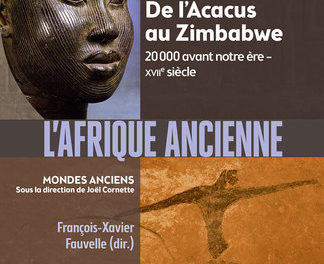 Image illustrant l'article africanc de La Cliothèque