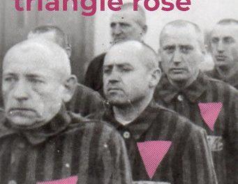 Image illustrant l'article Triangle rose001 de La Cliothèque