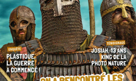 Image illustrant l'article GEON0191P001-viking-basdef-491x655 de La Cliothèque