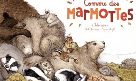 Image illustrant l'article Marmottes-_couv_editions_du_ricochet-max-700x700 de La Cliothèque