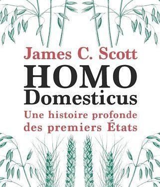 <em>Homo Domesticus. Une histoire profonde des premiers États</em>
