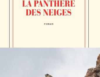 Image illustrant l'article 2019-10-14_22h51_05 de La Cliothèque