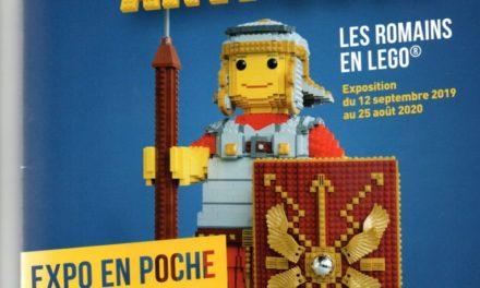 Image illustrant l'article briques20191102_0001 de La Cliothèque
