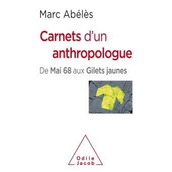 Carnets d'un anthropologue. De mai 68 aux gilets jaunes