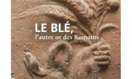 Image illustrant l'article le-ble-l-autre-or-des-romains de La Cliothèque
