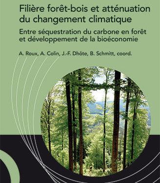 Filière forêt-bois et atténuation du changement climatique – Entre séquestration du carbone en forêt et développement de la bioéconomie