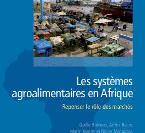 Les systèmes agroalimentaires en Afrique couverture