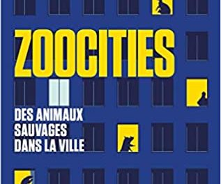 zoocities