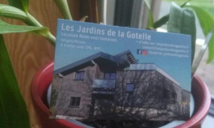 Image illustrant l'article IMG_20201002_185902 de La Cliothèque