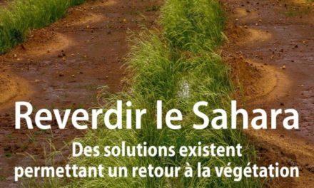 couverture Reverdir le sahara