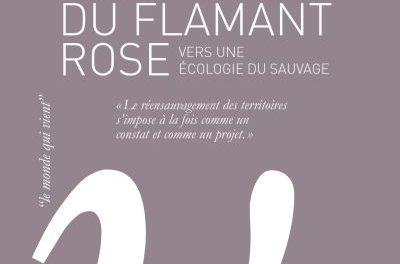 Image illustrant l'article Politiques-du-flamant-rose de La Cliothèque
