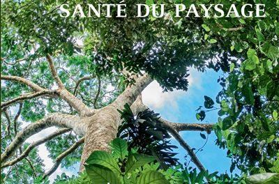 Image illustrant l'article Les-Carnets-du-paysage-n-37-Paysage-de-la-sante-sante-du-paysage de La Cliothèque