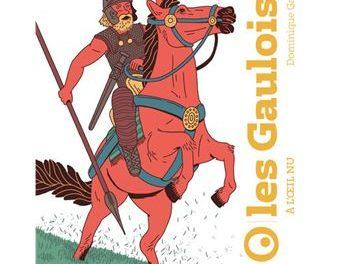 Image illustrant l'article Les-Gaulois-a-l-oeil-nu de La Cliothèque