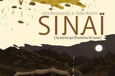 Image illustrant l'article Sinai de La Cliothèque