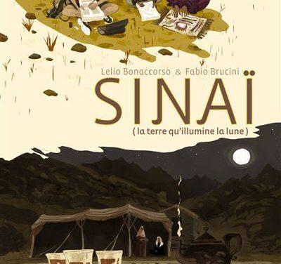 Sinaï  – La terre qu'illumine la lune