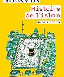 Image illustrant l'article Histoire de l'islam - Couverture de La Cliothèque