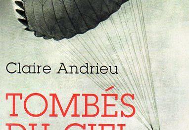 Image illustrant l'article Tombés du ciel001 de La Cliothèque