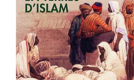 Esclavages et abolitions en terre d'islam